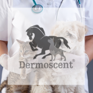 Logo Dermoscent laboratoire dermocosmétique animale