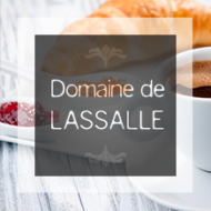 Logo Domaine Lassalle gîte de France