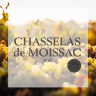 Chasselas de Moissac, référence client agence SO HAPPY WEB