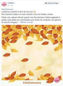 Jeu automne _cadum