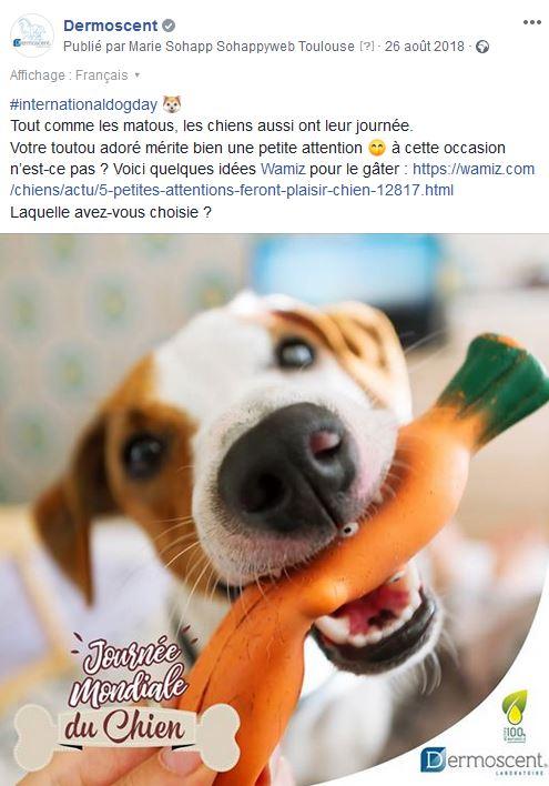 post FB journée du chien-dermoscent