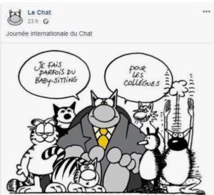 Journée du chat - Le Chat