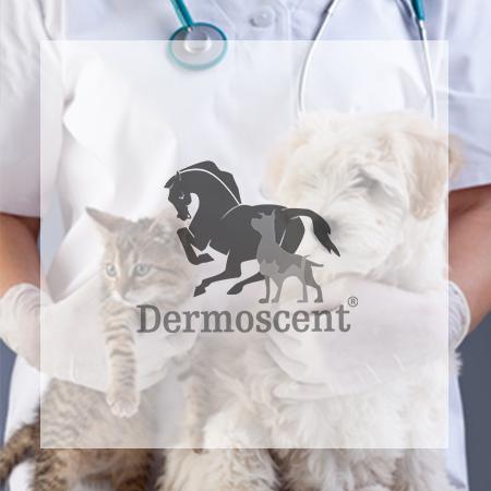 Logo Dermoscent laboratoire dermocosmétique animale