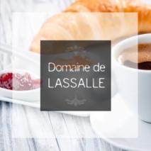 Gîte Domaine de Lassalle