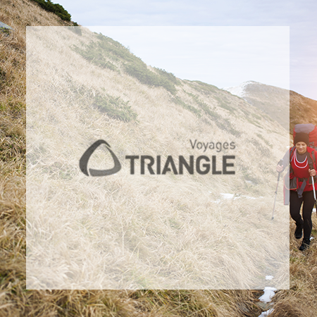 Logo Triangle voyages scolaires