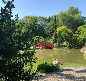 Dans le centre ville de Toulouse, le jardin japonais