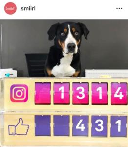 Smiirl - photo instagram