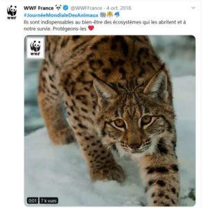 Journee_mondiale_animaux_wwf