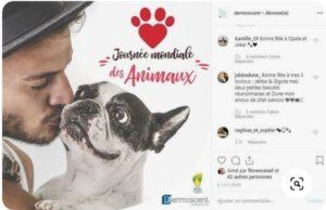 Journée mondiale des animaux - Dermoscent