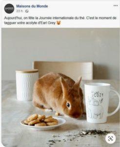 Journee mondiale du thé
