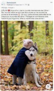 Hug Day Dermoscent